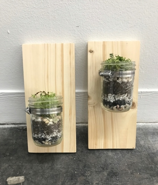 Simple Wall Mounted Planters Picture