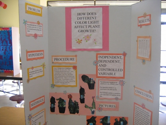 Stunning Music And Plants Science Fair Project Results Picture