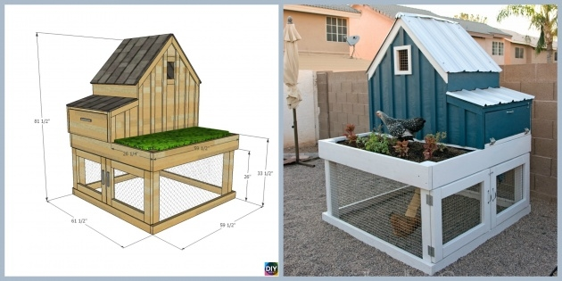 Stylish Chicken Coop With Planter Photo