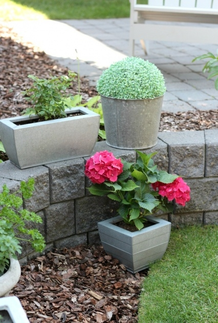 Stylish Outdoor Planter Ideas Picture