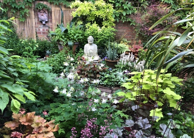 Stylish Plants For Small Gardens Picture