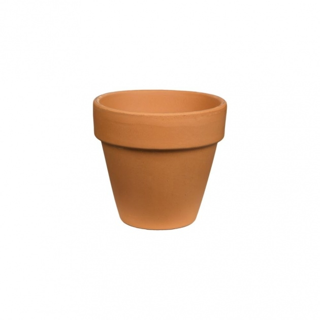 Stylish Small Plant Pots Picture
