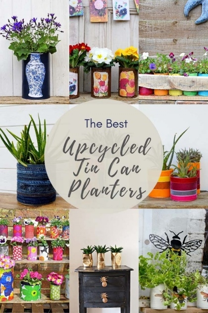 Stylish Tin Can Planters Picture