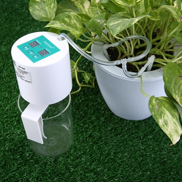 Super Cool Plant Watering System Photo