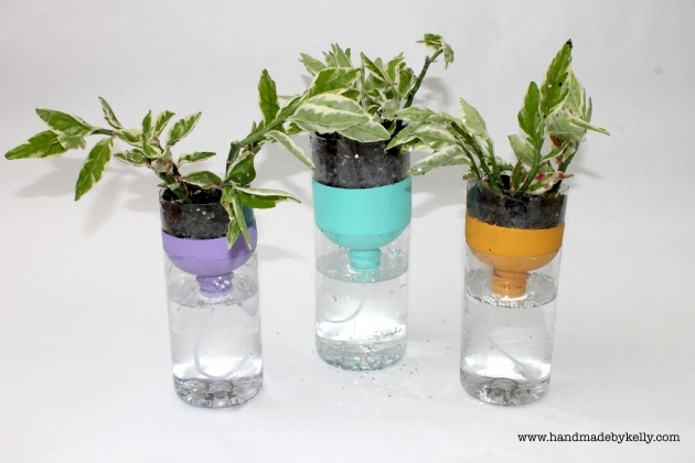 Super Cool Water Bottle Planter Picture