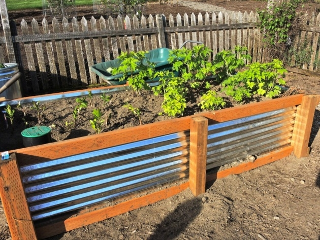Top Galvanized Steel Planter Boxes Photo