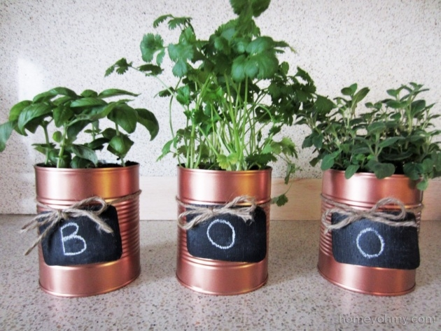Top Tin Can Planters Picture