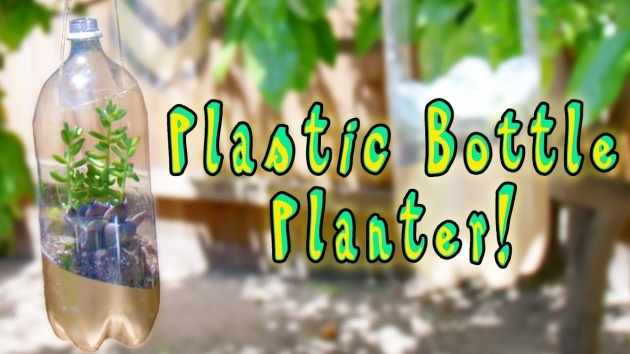 Top Water Bottle Planter Picture