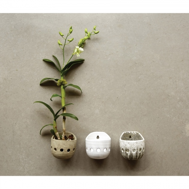 Wonderful Orchid Wall Planter Picture