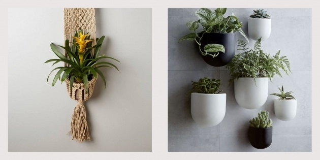 Wonderful Vertical Wall Planter Indoor Picture